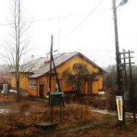 Анциферово (снимок из окна поезда), Анциферово