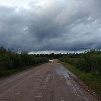 Между деревнями Радоли и Озерёво, Батецкий