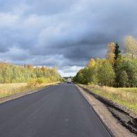Свежий асфальт на автодороге Р47 Луга - Новгород, Батецкий
