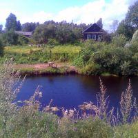 река Большая Вишера, Большая Вишера