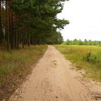 Дорога вдоль озера..., Деманск