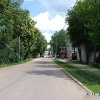 Демянск, ул. Ленина/Demyansk, Lenin st., 07.07.2011, Деманск