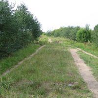 Зарубино 1 (approx. location), Зарубино