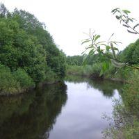 Изгиб реки, Кресцы