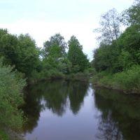 Река, Кресцы