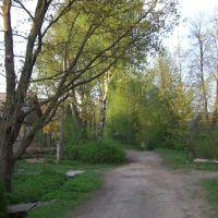 Дорога к реке, Кресцы