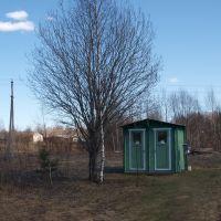 «Славянская деревня Х века», Любытино
