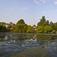 Lake, Малая Вишера