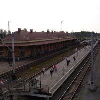 станция Малая Вишера, Малая Вишера
