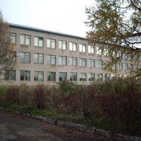 Парфинская средняя образовательная школа (микрорайон), Парфино