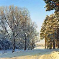 Пестовский Парк, Пестово