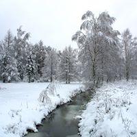 Ручей Холодный, Пестово