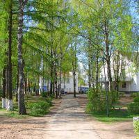 Сквер, Пестово