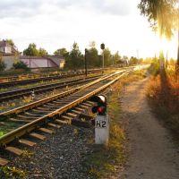 Станция Пестово, Пестово