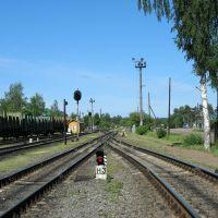Pestovo station, Пестово