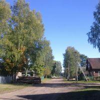 Пестово, улица Мологская, Пестово