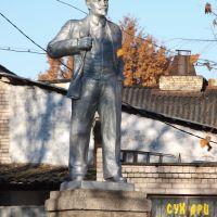 Ленин и сухари, Сольцы