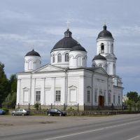 Ильинский собор (1824—1825 года) в городе Сольци, Сольцы