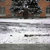 Бюст Ленину работы Томского, Старая Русса