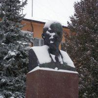 Бюст Ленину, Старая Русса