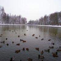 Верхний пруд, Старая Русса