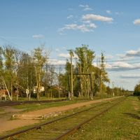 Krestsy station, Хвойное
