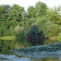 Река Холова / Kholova River, Хвойное