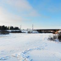 Зимний Новгородский мост, Чудово