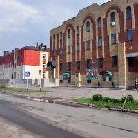 Улица Некрасова, Чудово