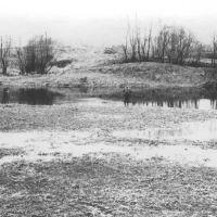 1988 весна, Чудово