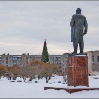 Чудово. Ленин и ель новогодняя, Чудово