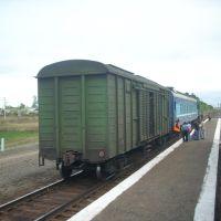 Поезд Карасук-Татарская, Баган
