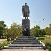 Lenin, Баган