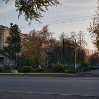Бердск. Клумба в начале октября., Бердск