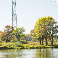 Деревья у воды, Бердск