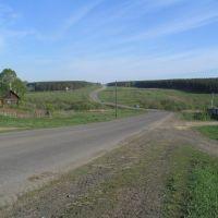 Дорога в Лесхоз, Болотное