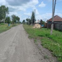 ул.Чапаева, Болотное
