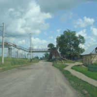 Переходной мост, Болотное