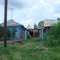 Деревня..., Болотное