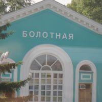 Станция Болотная, Болотное