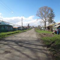 Улица Льва Толстого, Болотное