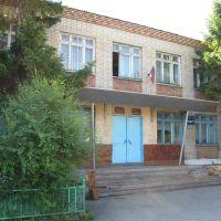 Библиотека, Венгерово