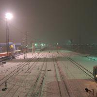 Станция Искитим (вид в сторону Черепаново), Искитим