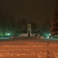 Мемориал в честь погибших в Великой Отечественной войне, Искитим