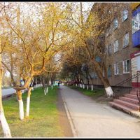 Улица Ленина, Карасук