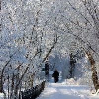 Переулок Совхозный, Карасук