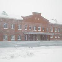 Школа., Каргат