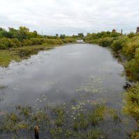 река Каргат, Каргат