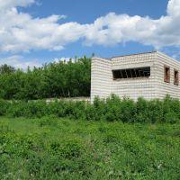 Руины, Колывань