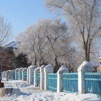 Новосибирская обл., Колывань. У школы №1, Колывань